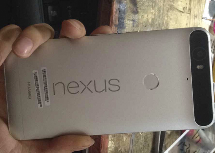 New Nexus devices with specific date for release in September 1